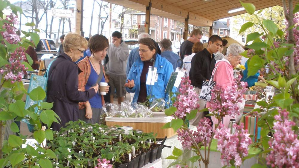 People shopping for flowers at an outdoor farmers' market in Virginia near the Friendly City Inn .